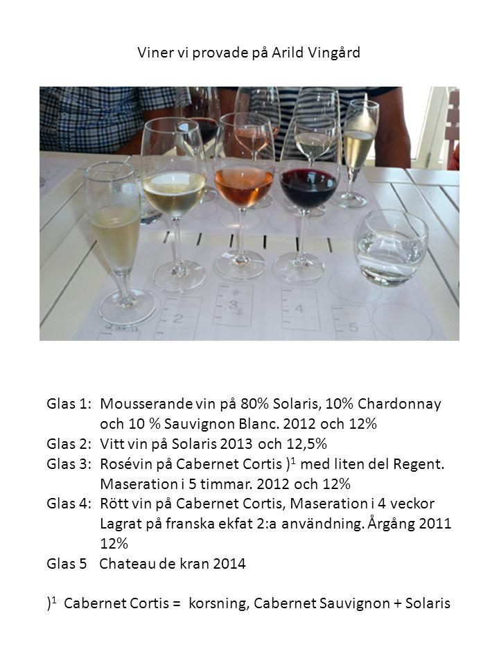 Efter god lunch och en provning, där vinerna positivt överraskade de flesta, på Arild gick resan vidare till KLAGSHAMNS VINGÅRD Vi tog emot av Murat Sofrakis alias Murre i vinvärlden.