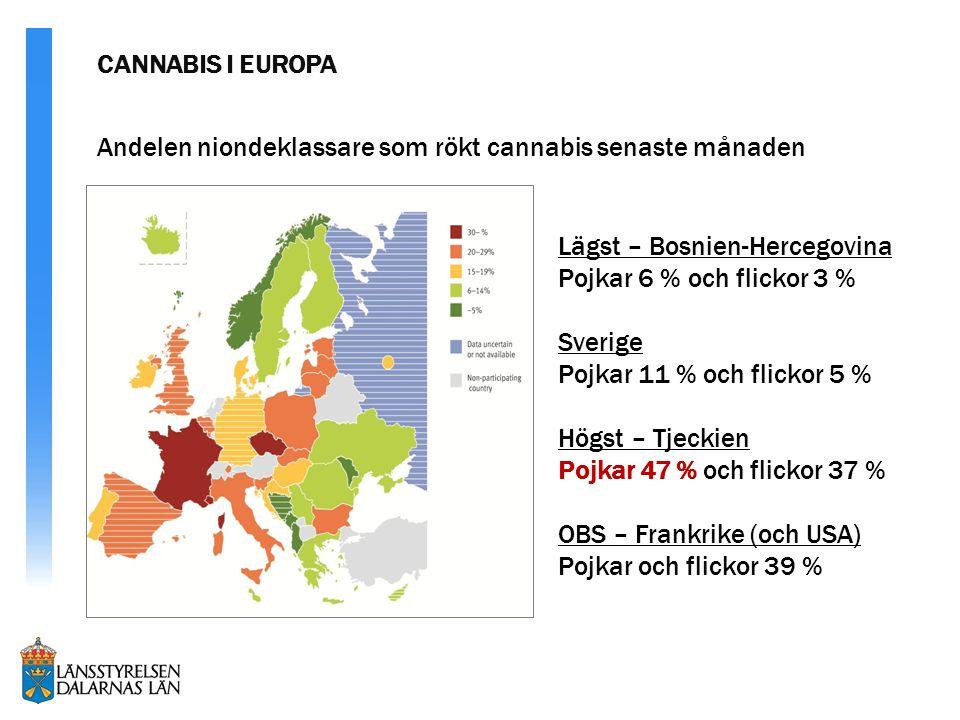 Lägst – Bosnien-Hercegovina Pojkar 6 % och flickor 3 % Sverige Pojkar 11 % och flickor 5 % Högst – Tjeckien Pojkar 47 % och flickor 37 % OBS – Frankrike (och USA) Pojkar och flickor 39 % Andelen niondeklassare som rökt cannabis senaste månaden CANNABIS I EUROPA