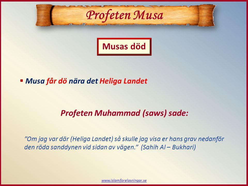 www.islamforelasningar.se Musas död  Musa får dö nära det Heliga Landet Profeten Muhammad (saws) sade: Om jag var där (Heliga Landet) så skulle jag visa er hans grav nedanför den röda sanddynen vid sidan av vägen. (Sahih Al – Bukhari) Profeten Musa