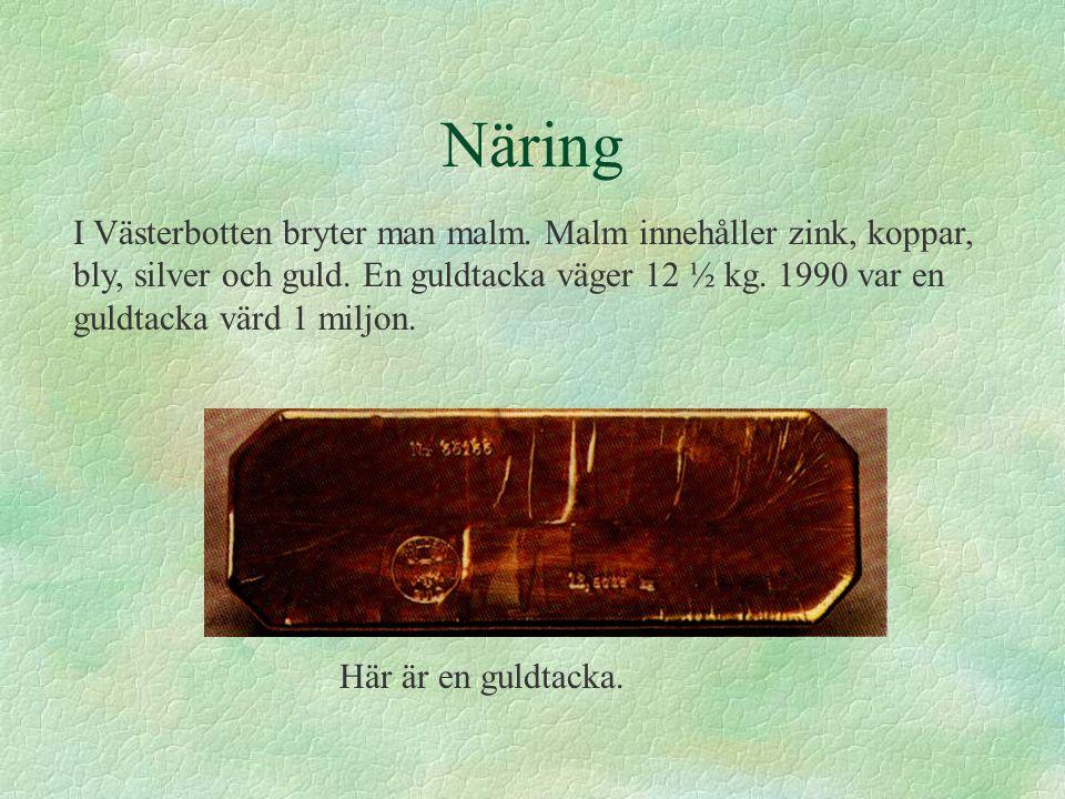 Näring I Västerbotten bryter man malm.Malm innehåller zink, koppar, bly, silver och guld.