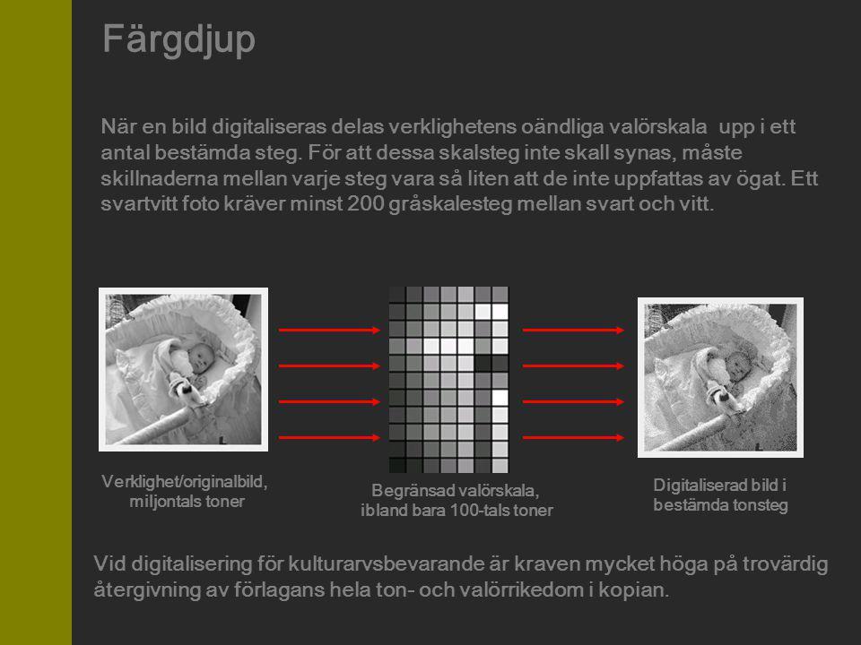 Färgdjup När en bild digitaliseras delas verklighetens oändliga valörskala upp i ett antal bestämda steg. För att dessa skalsteg inte skall synas, mås