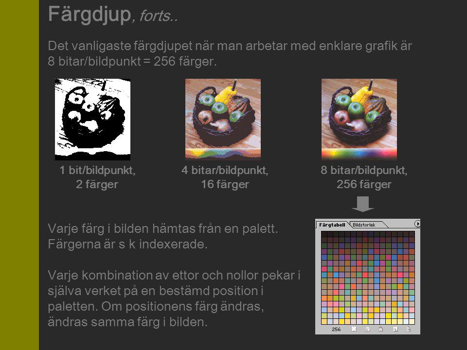 Det vanligaste färgdjupet när man arbetar med enklare grafik är 8 bitar/bildpunkt = 256 färger. 1 bit/bildpunkt, 2 färger 4 bitar/bildpunkt, 16 färger