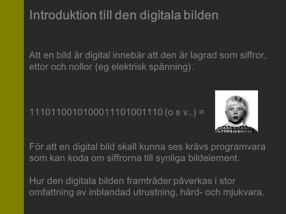 Introduktion till den digitala bilden Att en bild är digital innebär att den är lagrad som siffror, ettor och nollor (eg elektrisk spänning). 11101100
