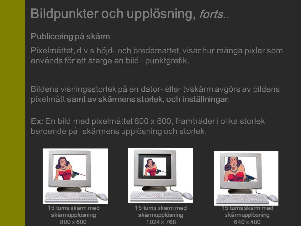 Publicering på skärm Pixelmåttet, d v s höjd- och breddmåttet, visar hur många pixlar som används för att återge en bild i punktgrafik. Bildens visnin