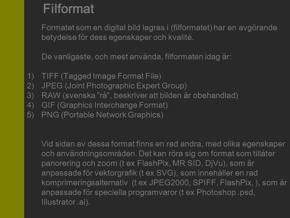 Filformat Formatet som en digital bild lagras i (filformatet) har en avgörande betydelse för dess egenskaper och kvalité. De vanligaste, och mest anvä