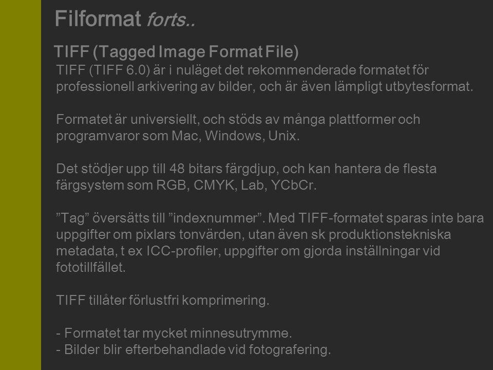 TIFF (Tagged Image Format File) TIFF (TIFF 6.0) är i nuläget det rekommenderade formatet för professionell arkivering av bilder, och är även lämpligt