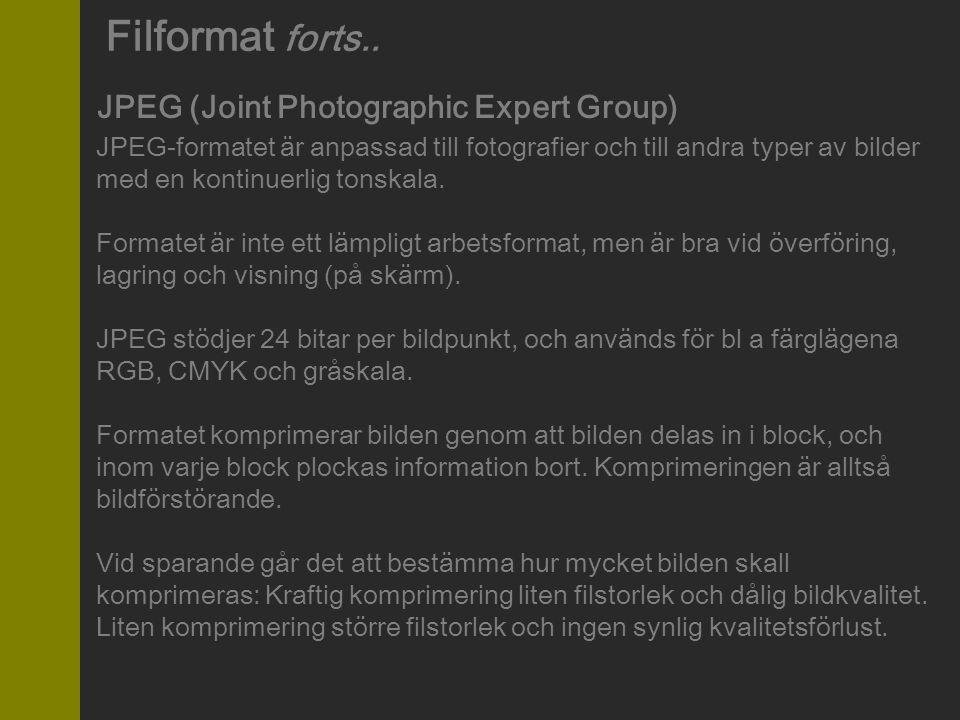JPEG (Joint Photographic Expert Group) JPEG-formatet är anpassad till fotografier och till andra typer av bilder med en kontinuerlig tonskala. Formate