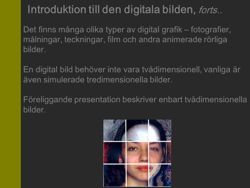 Teknik bakom digitala bilder Det finns endast två typer av tekniker vid skapande av digitala bilder: Vektorgrafik (eller objektgrafik) Punktgrafik (eller rastergrafik, bitmaps ) Alla digitala bilder är gjorda antingen i den ena, eller andra tekniken, eller både och.