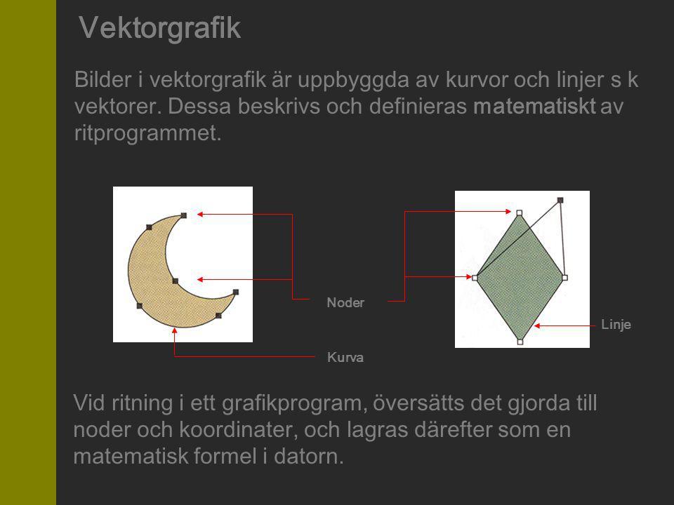 Vektorgrafik Bilder i vektorgrafik är uppbyggda av kurvor och linjer s k vektorer. Dessa beskrivs och definieras matematiskt av ritprogrammet. Vid rit
