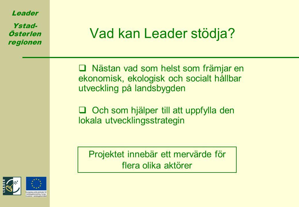 Leader Ystad- Österlen regionen Vad kan Leader stödja?  Nästan vad som helst som främjar en ekonomisk, ekologisk och socialt hållbar utveckling på la