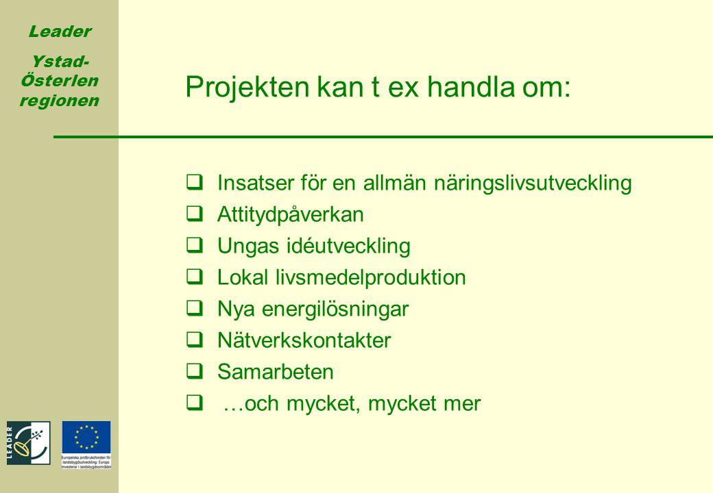 Leader Ystad- Österlen regionen Projekten kan t ex handla om:  Insatser för en allmän näringslivsutveckling  Attitydpåverkan  Ungas idéutveckling 