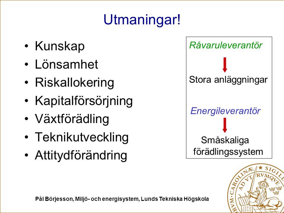 Pål Börjesson, Miljö- och energisystem, Lunds Tekniska Högskola Utmaningar! Kunskap Lönsamhet Riskallokering Kapitalförsörjning Växtförädling Teknikut