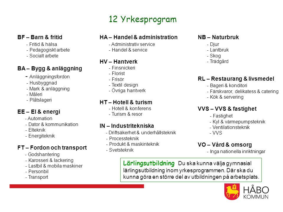 12 Yrkesprogram BF – Barn & fritid - Fritid & hälsa - Pedagogiskt arbete - Socialt arbete BA – Bygg & anläggning - Anläggningsfordon - Husbyggnad - Ma