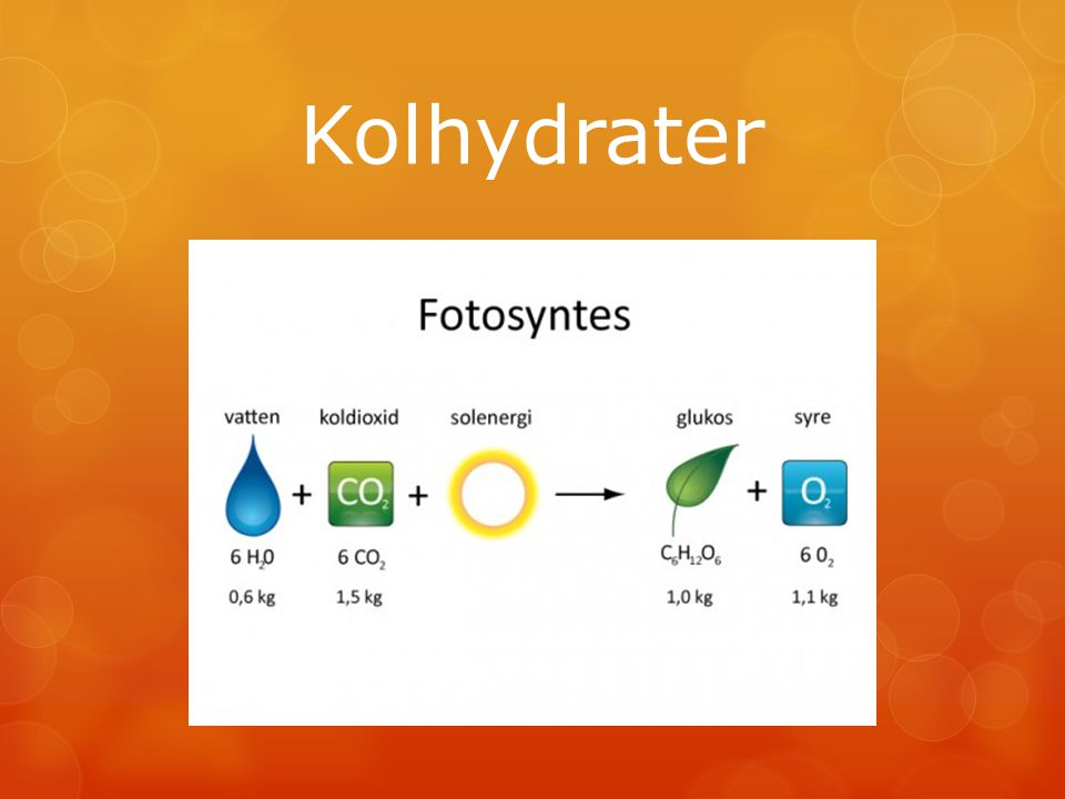 Kolhydratkällor