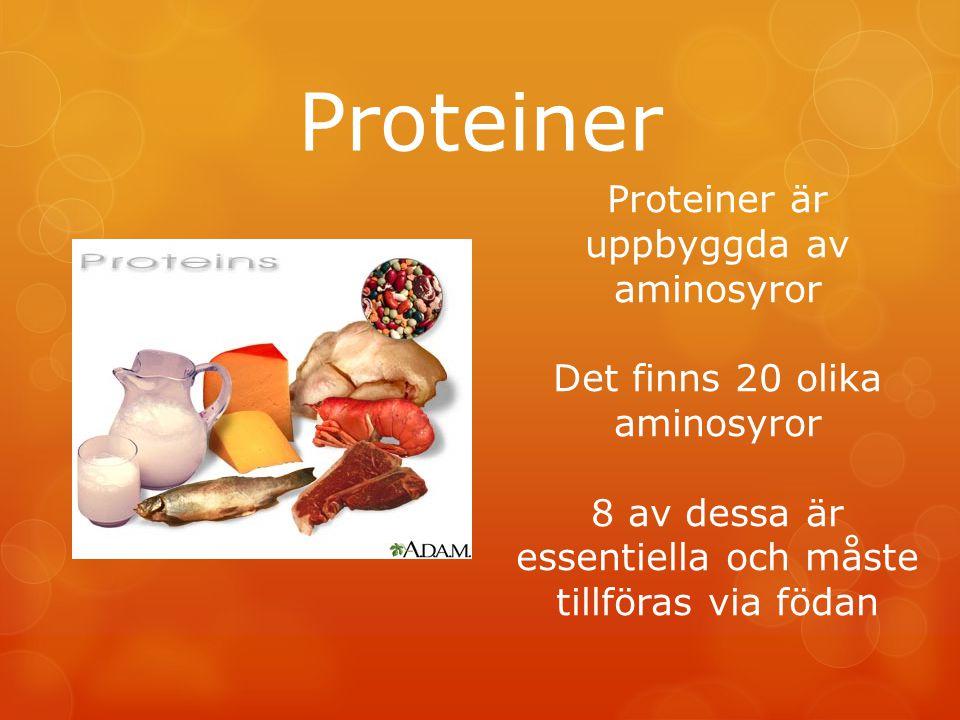 Proteiner Proteiner är uppbyggda av aminosyror Det finns 20 olika aminosyror 8 av dessa är essentiella och måste tillföras via födan