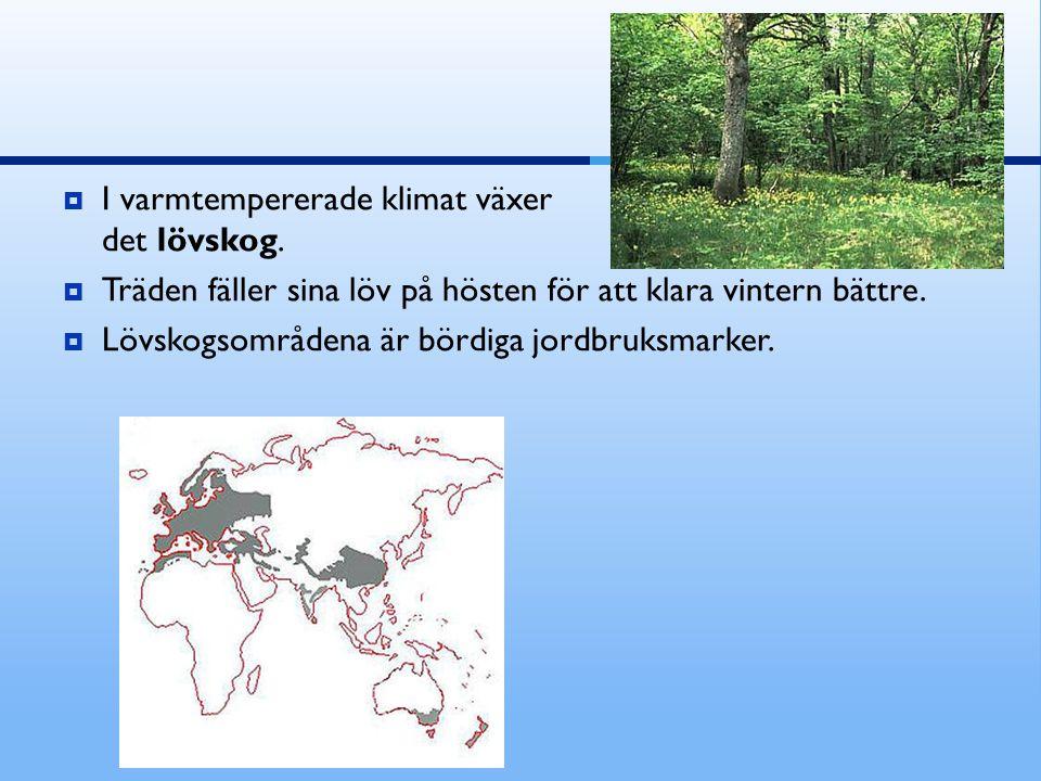 I varmtempererade klimat växer det lövskog.  Träden fäller sina löv på hösten för att klara vintern bättre.  Lövskogsområdena är bördiga jordbruks