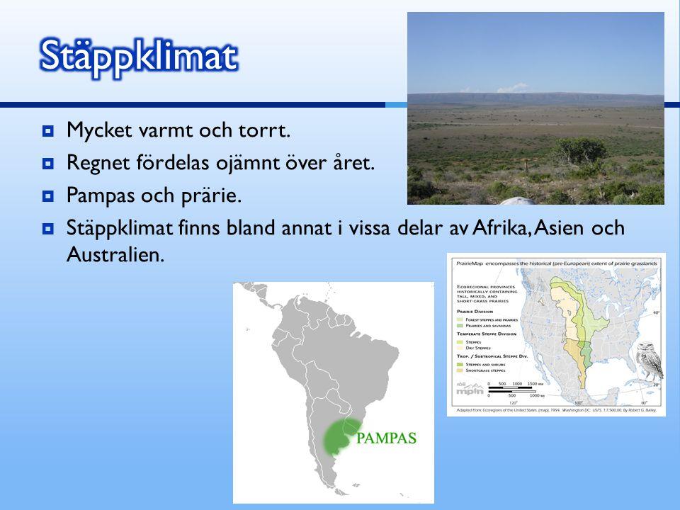  Mycket varmt och torrt.  Regnet fördelas ojämnt över året.  Pampas och prärie.  Stäppklimat finns bland annat i vissa delar av Afrika, Asien och