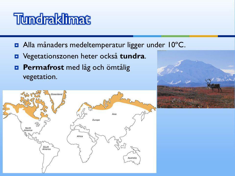  Alla månaders medeltemperatur ligger under 10ºC.  Vegetationszonen heter också tundra.  Permafrost med låg och ömtålig vegetation.