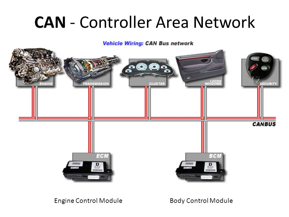 CAN - Controller Area Network Engine Control ModuleBody Control Module