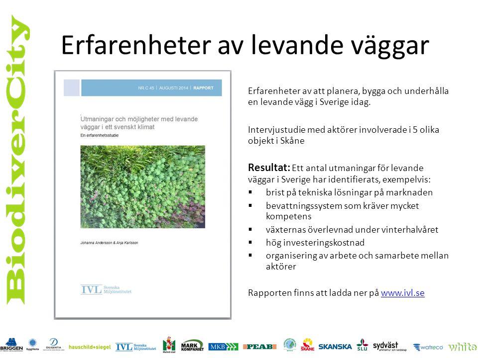 Lite till Skötselmall: Styra vegetationen åt ett tänkt håll – att hjälpa naturen att själv göra jobbet.