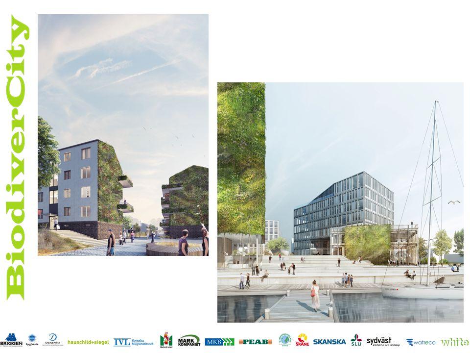 Steg 3 Ansökan inlämnad till Vinnova Januari 2015-december 2016 – Tillämpa lösningar i stor skala i befintliga bostadsområden – Det gröna kontoret – Solceller och biodiversitetstak i kombo – Träd i gata – Utvärderingar – Information, utbildning, utställning, guidning