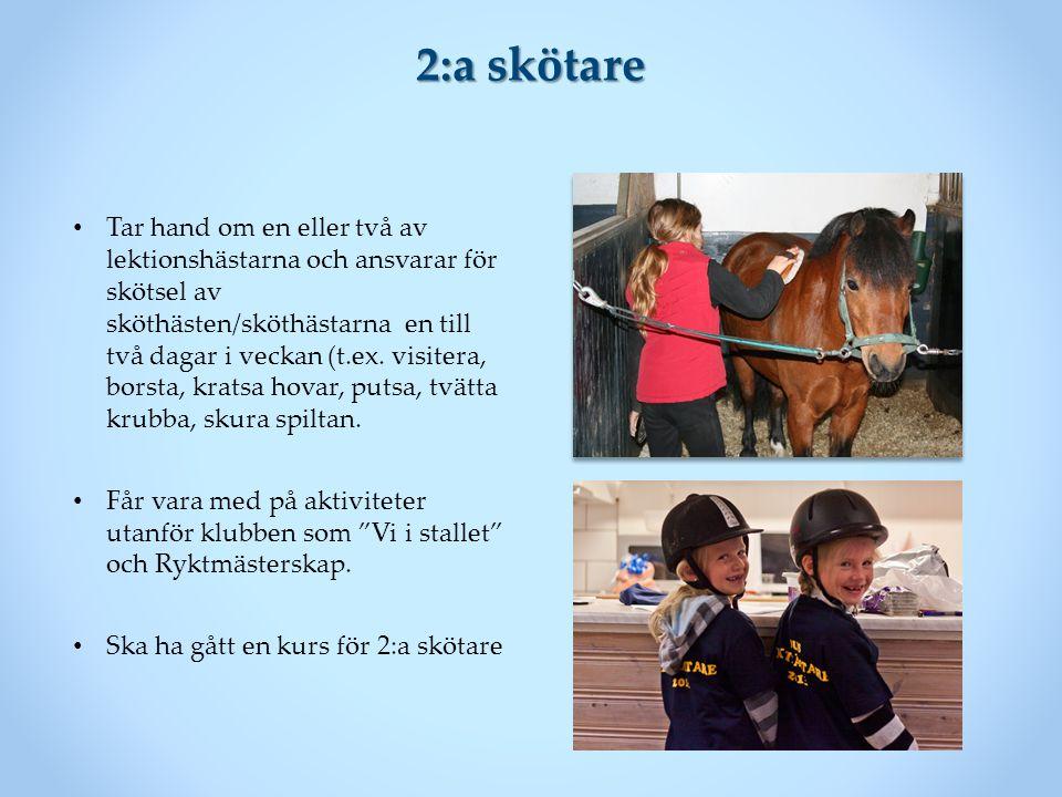 2:a skötare Tar hand om en eller två av lektionshästarna och ansvarar för skötsel av sköthästen/sköthästarna en till två dagar i veckan (t.ex.
