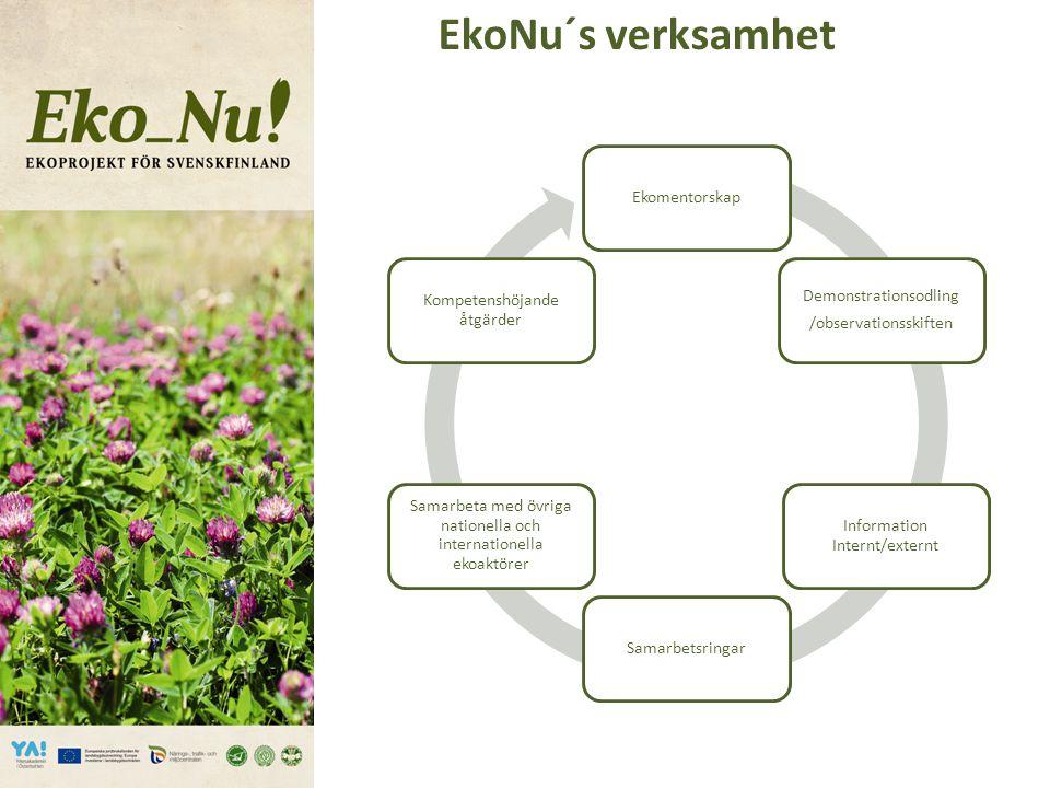 Samarbete mellan spannmåls- och husdjursgårdar 11.2.2013.