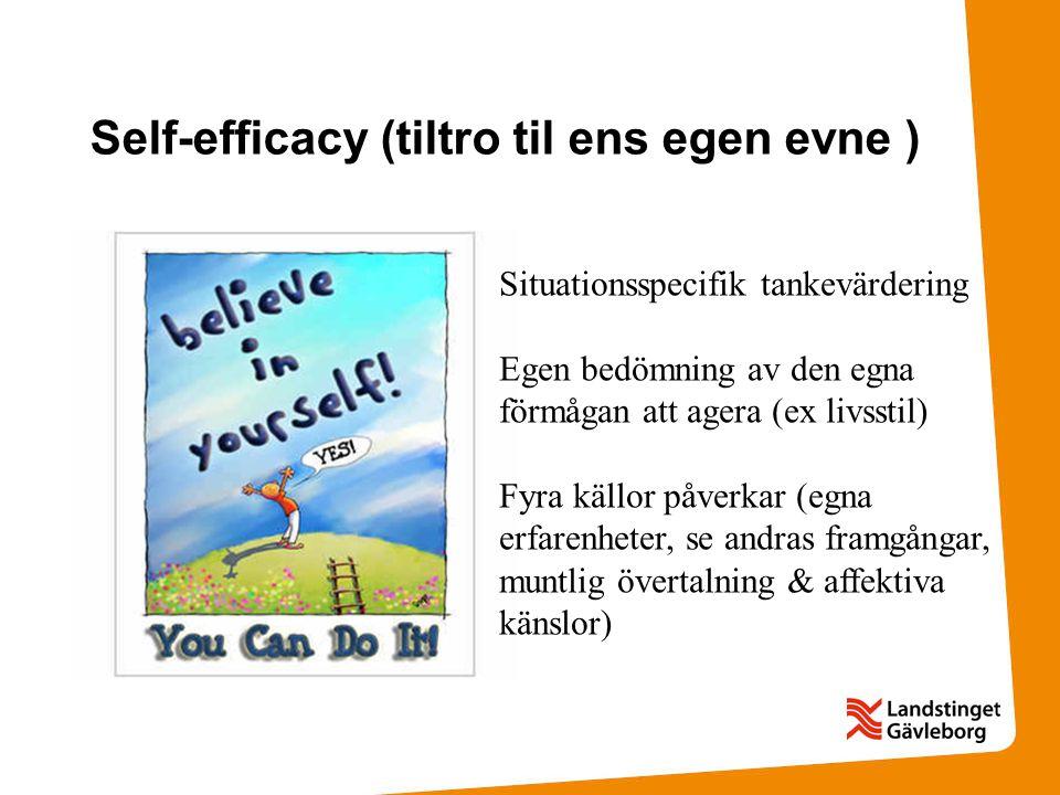 Self-efficacy (tiltro til ens egen evne ) Situationsspecifik tankevärdering Egen bedömning av den egna förmågan att agera (ex livsstil) Fyra källor på