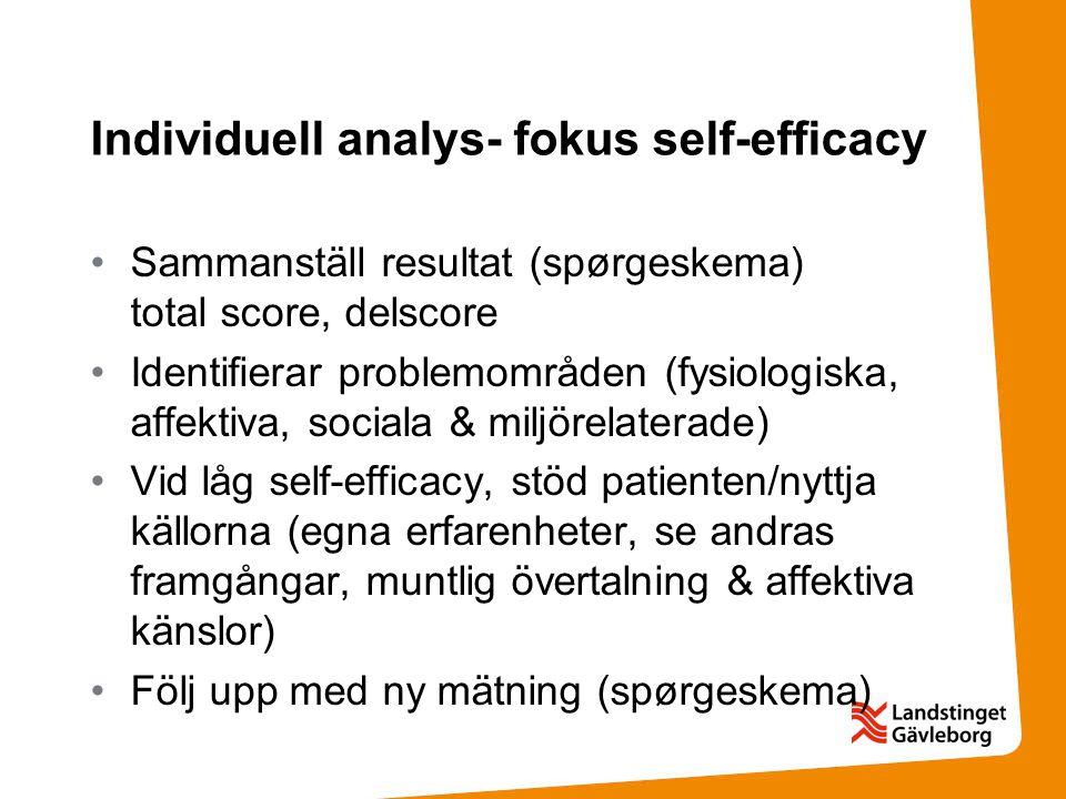 Individuell analys- fokus self-efficacy Sammanställ resultat (spørgeskema) total score, delscore Identifierar problemområden (fysiologiska, affektiva,