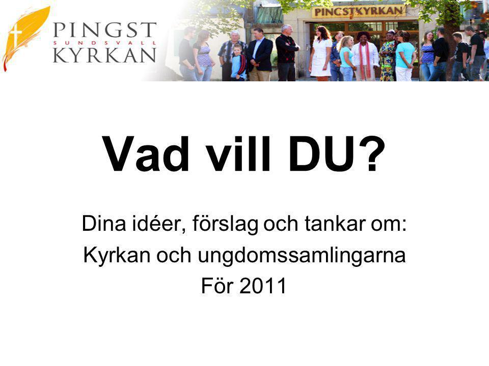 Vad vill DU Dina idéer, förslag och tankar om: Kyrkan och ungdomssamlingarna För 2011