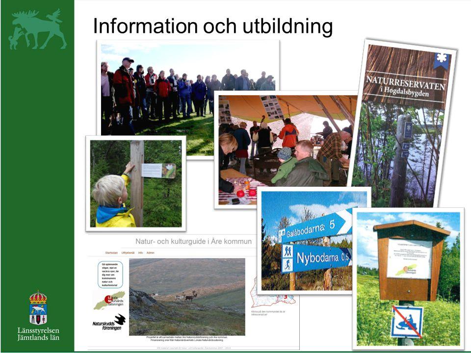 Information och utbildning