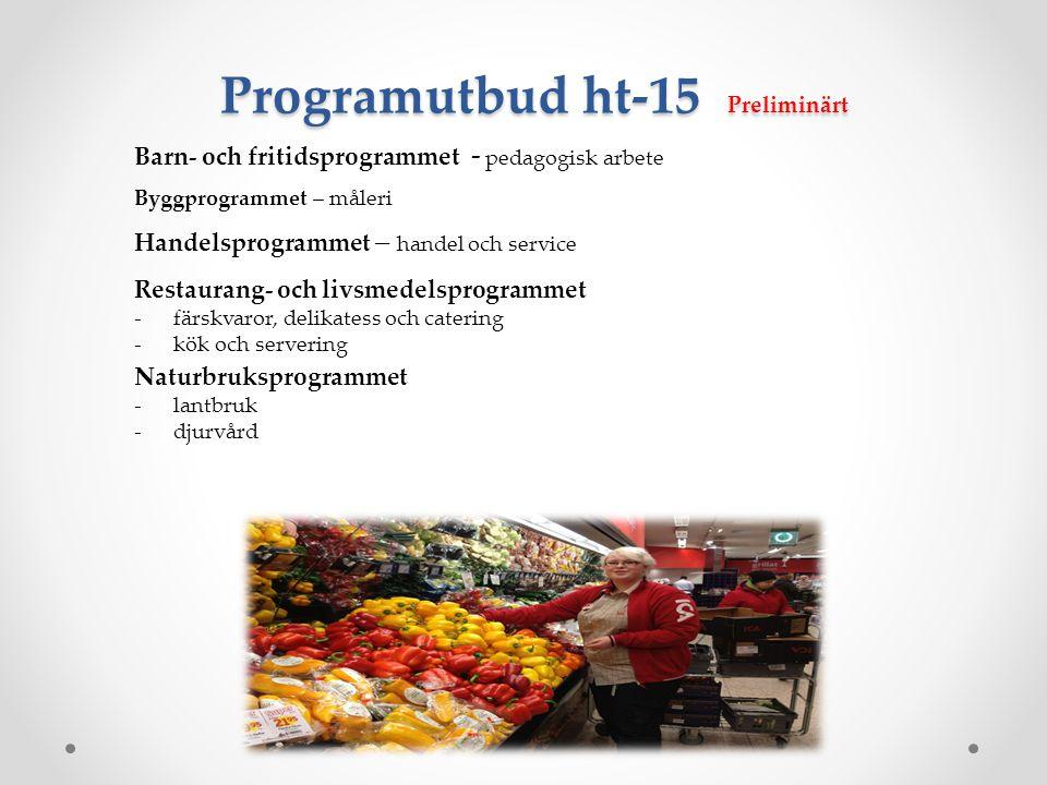 Programutbud ht-15 Preliminärt Barn- och fritidsprogrammet - pedagogisk arbete Byggprogrammet – måleri Handelsprogrammet – handel och service Restaura