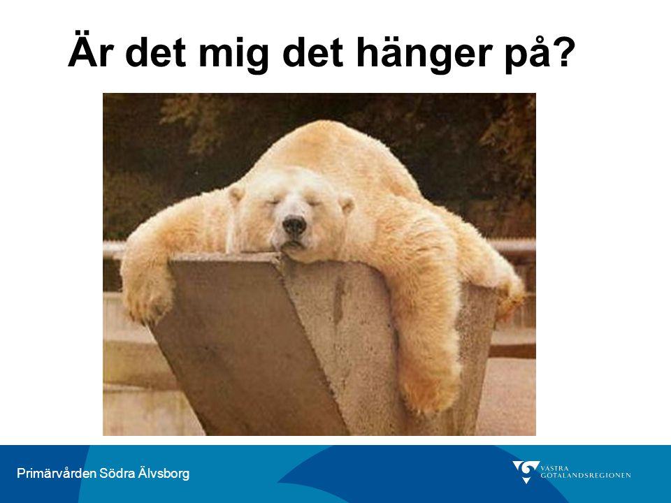 Primärvården Södra Älvsborg Är det mig det hänger på?