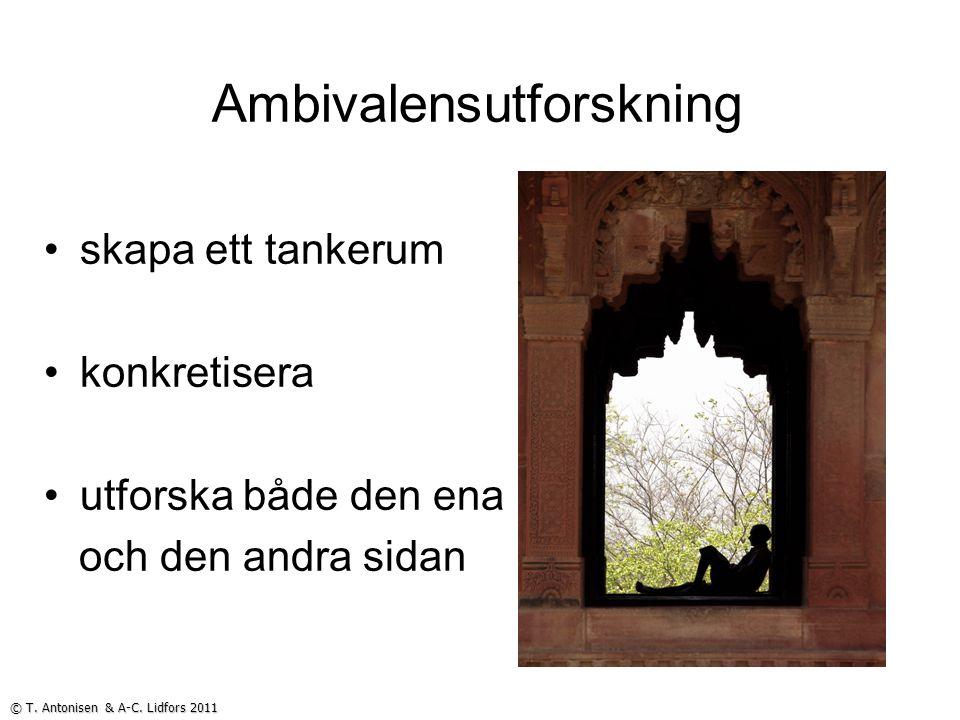 Ambivalensutforskning skapa ett tankerum konkretisera utforska både den ena och den andra sidan © T. Antonisen & A-C. Lidfors 2011