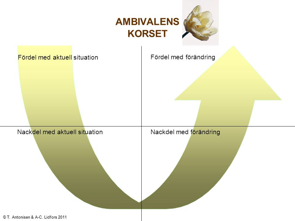 Ambivalensutforskning kan leda till: Ett beslut att förändra Ett beslut att inte förändra Ett beslut att fundera vidare, ta reda på mer.