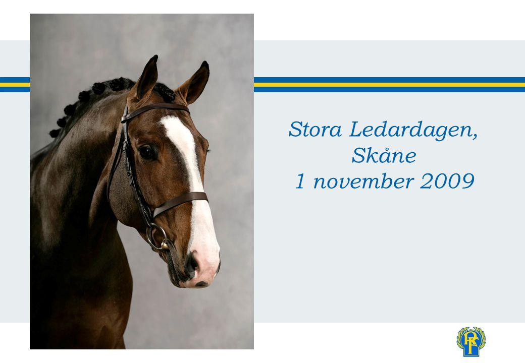 Stora Ledardagen, Skåne 1 november 2009