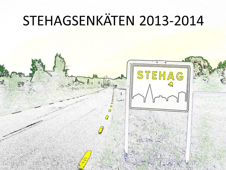 STEHAGSENKÄTEN 2013-2014