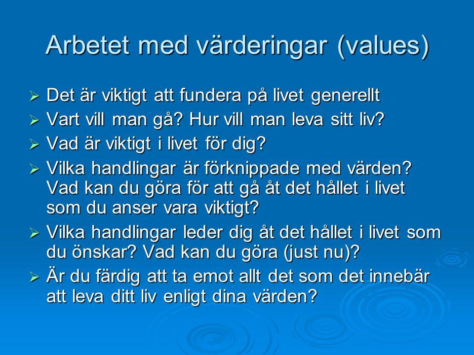 Arbetet med värderingar (values)  Det är viktigt att fundera på livet generellt  Vart vill man gå? Hur vill man leva sitt liv?  Vad är viktigt i li