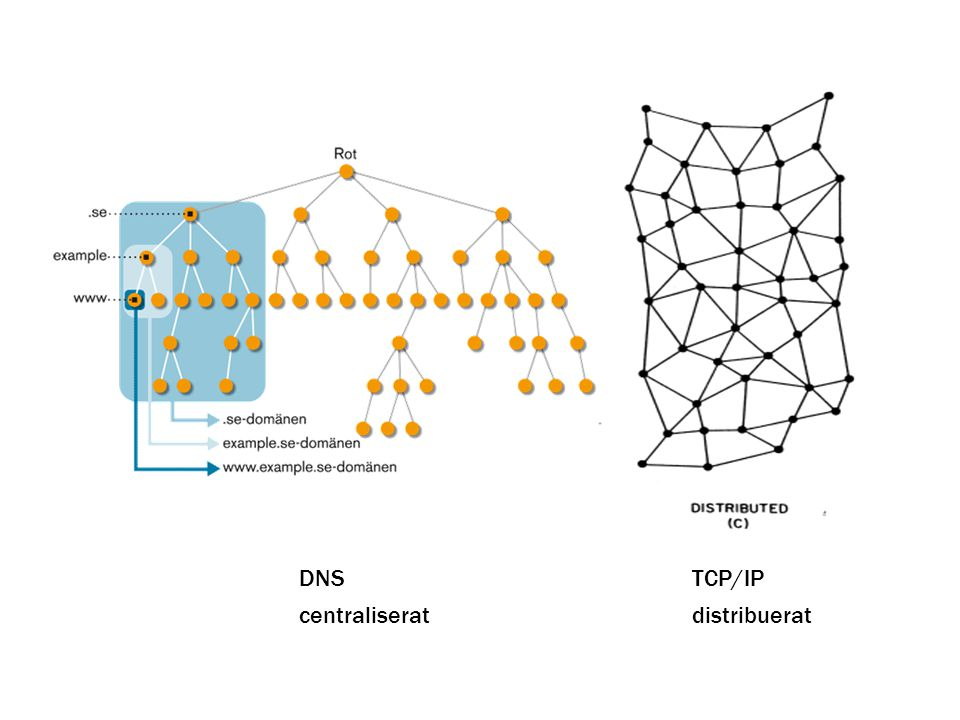 centraliseratdistribuerat DNSTCP/IP