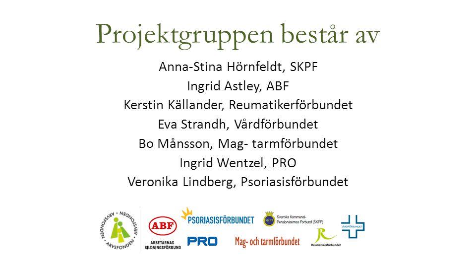 Projektgruppen består av Anna-Stina Hörnfeldt, SKPF Ingrid Astley, ABF Kerstin Källander, Reumatikerförbundet Eva Strandh, Vårdförbundet Bo Månsson, M