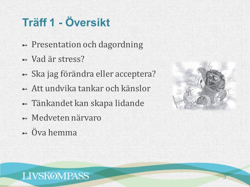 3 Träff 1 - Översikt ➻ ➻ Presentation och dagordning ➻ ➻ Vad är stress? ➻ ➻ Ska jag förändra eller acceptera? ➻ ➻ Att undvika tankar och känslor ➻ ➻ T