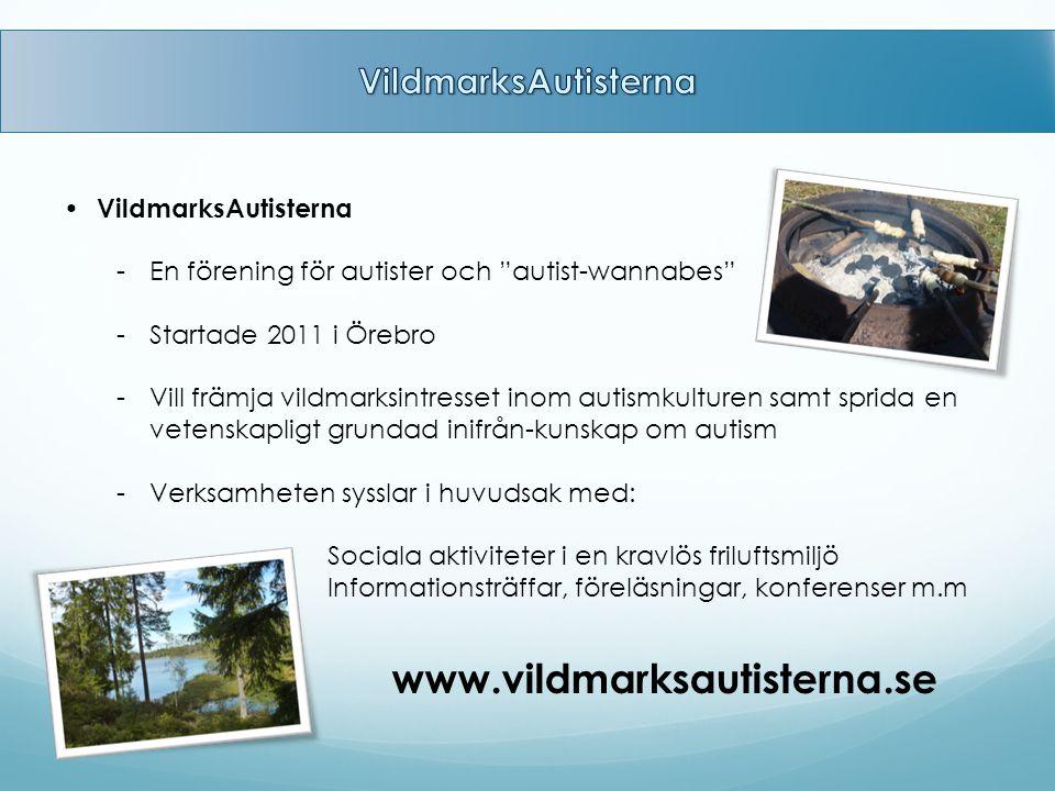 """VildmarksAutisterna -En förening för autister och """"autist-wannabes"""" -Startade 2011 i Örebro -Vill främja vildmarksintresset inom autismkulturen samt s"""