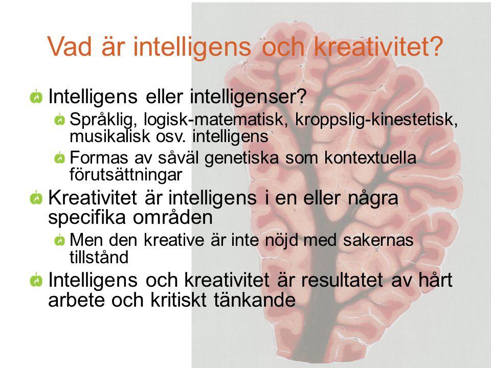 Vad är intelligens och kreativitet.Intelligens eller intelligenser.