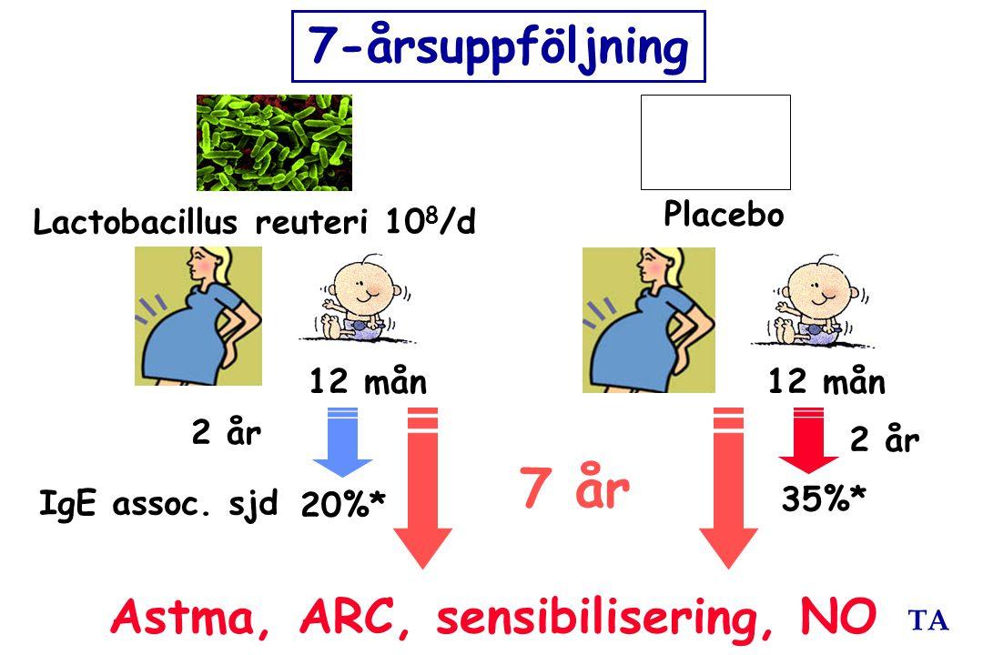 TA Placebo IgE assoc. sjd 20%* 35%* 2 år 12 mån 2 år 7 år 7-årsuppföljning Lactobacillus reuteri 10 8 /d Astma, ARC, sensibilisering, NO