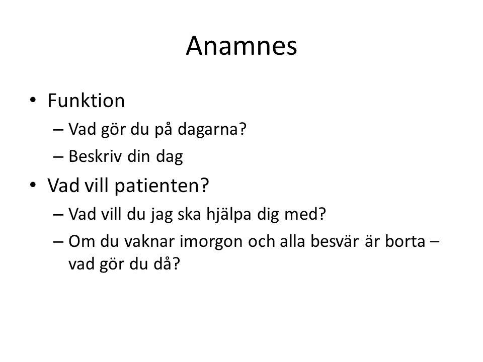Anamnes Funktion – Vad gör du på dagarna.– Beskriv din dag Vad vill patienten.