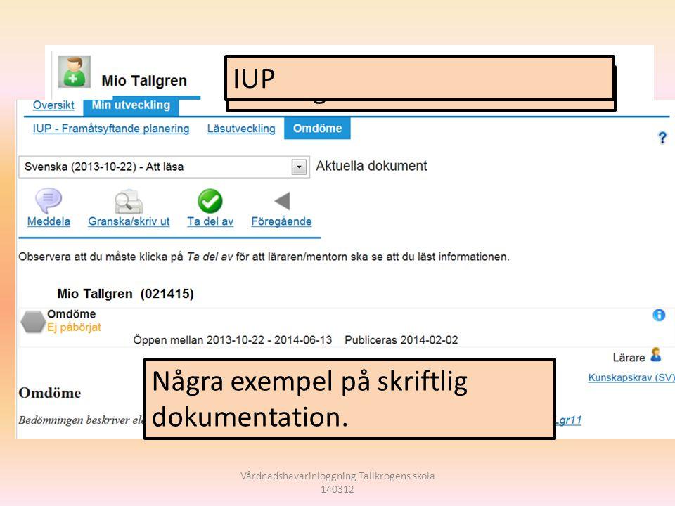 Skriftligt omdöme IUP Några exempel på skriftlig dokumentation.