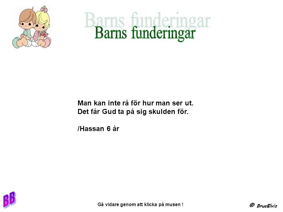 Har ni bro Nej men det FINSPÅNG ! ® BrucElvis Gå vidare genom att klicka på musen !
