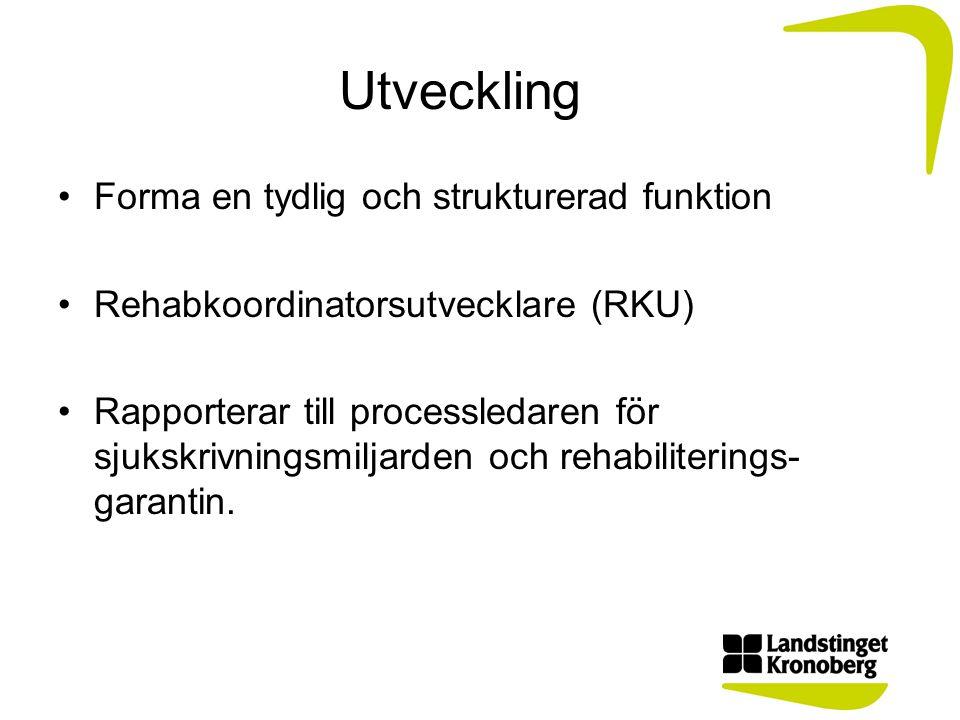 RKU:s uppdrag Vara kontaktperson för koordinatorerna.