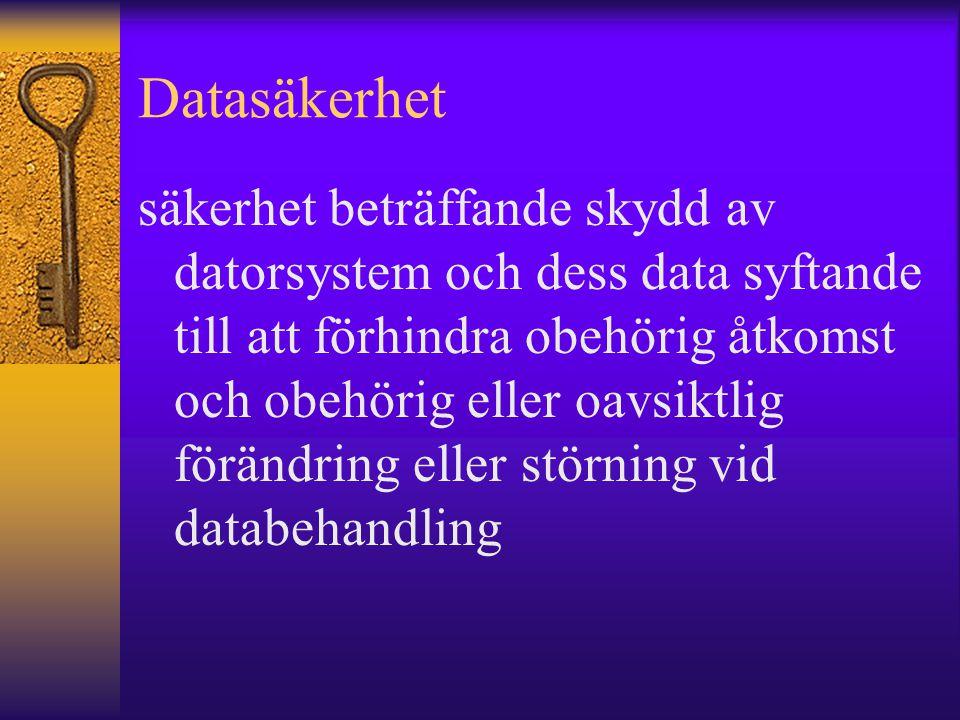 Datasäkerhet säkerhet beträffande skydd av datorsystem och dess data syftande till att förhindra obehörig åtkomst och obehörig eller oavsiktlig föränd