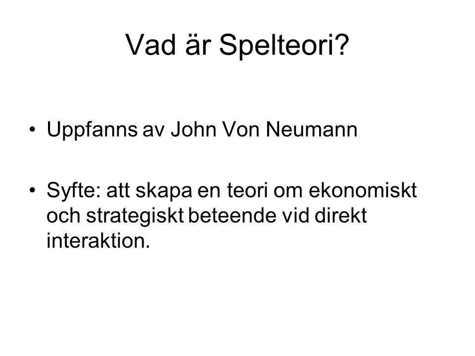 Vad är Spelteori.